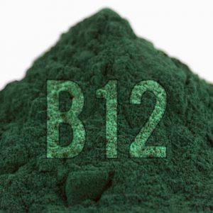 vegans-and-vitamin-b12