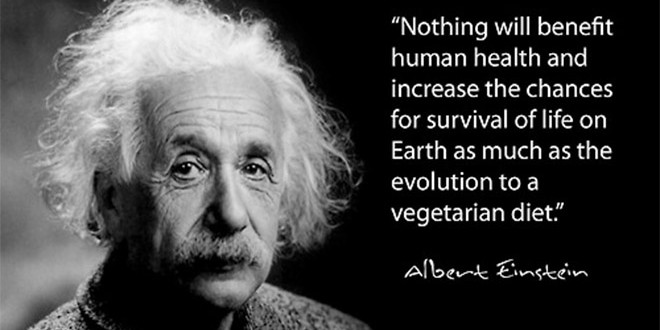 Vegetarian-quote-Einstein-660x330.jpg