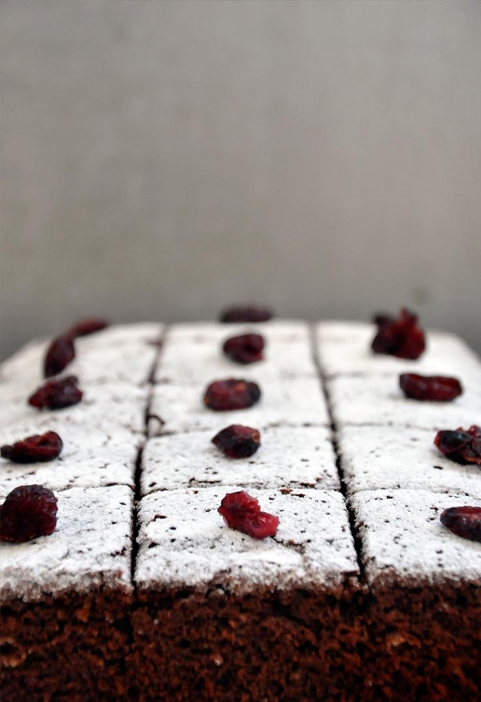 Gluten-Free gingerbread cake Turta dulce pufoasa fara gluten 2