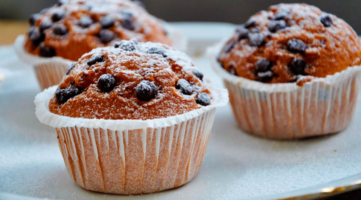 Chocolate Chip Coconut Muffins Vegetarian