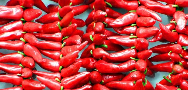 The Great Benefits of Eating Chili