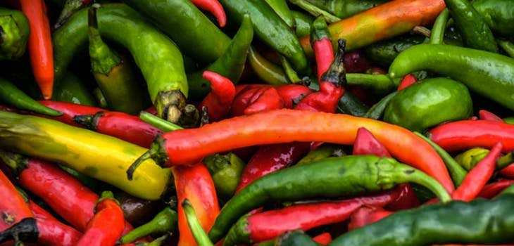 health Benefits of Eating Chili