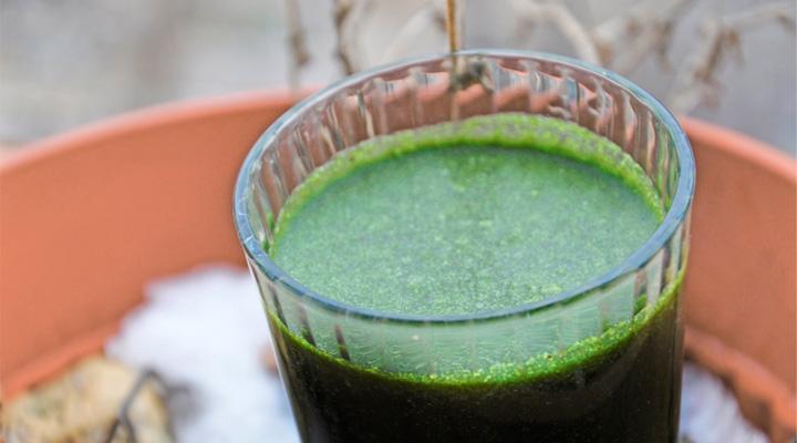 Green Smoothie Immunity Booster | Smoothie verde pentru cresterea imunitatii