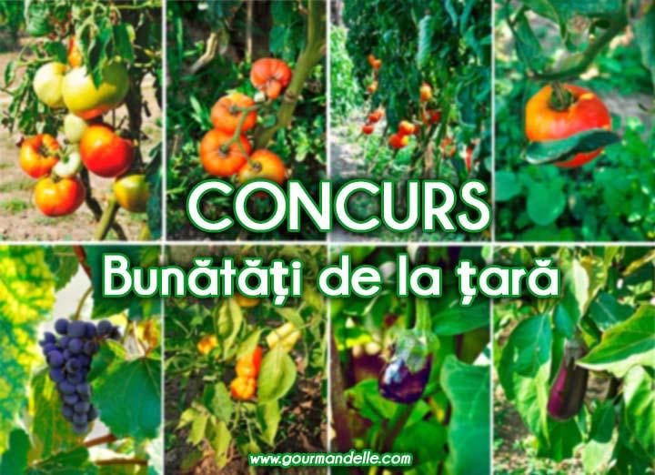 Concurs gourmandelle bunatati de la tara legume bio