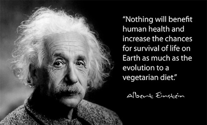 Vegetarian quote Einstein