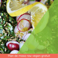 Plan de masa raw vegan gratuit
