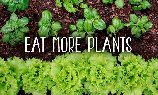 eat more plants