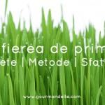Detoxifierea de primavara Retete Metode Sfaturi