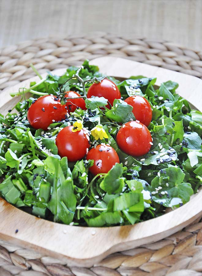 Spring Watercress Salad Balsamic Vinaigrette