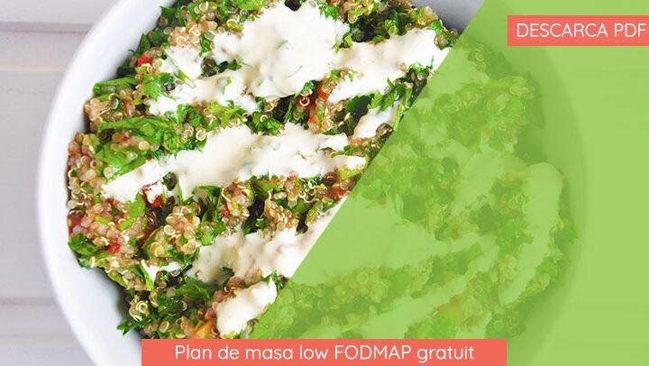 Plan de masa low FODMAP gratuit