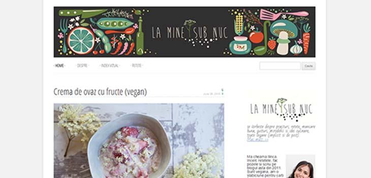 la mine sub nuc bloguri vegetariene