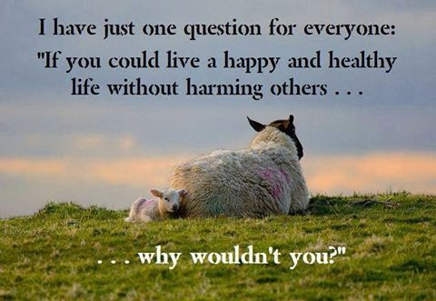 live a life without harming others