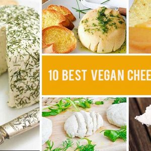 best vegan cheese recipes