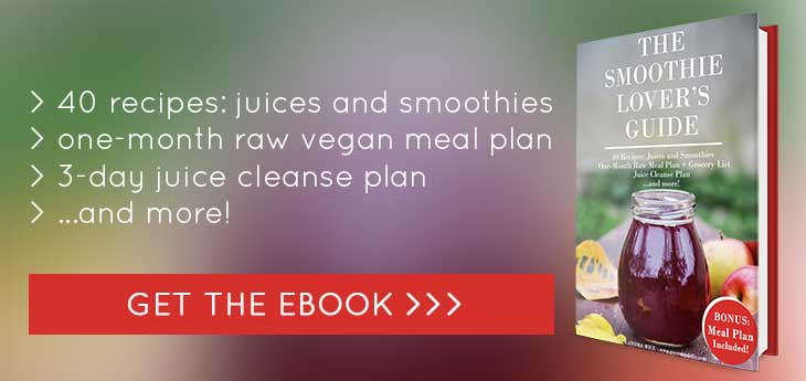 The Smoothie Lover's Guide eBook