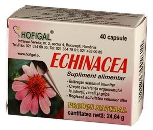 echinacea-40cps
