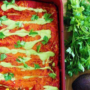 protein rich vegan enchiladas vegane reteta