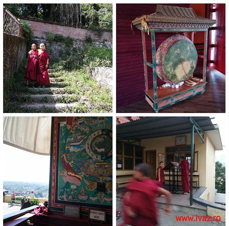 budisti ivaz