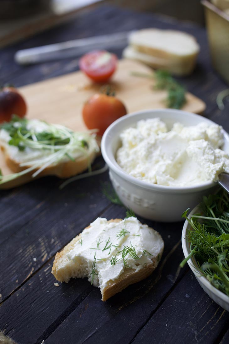 how to make Vegan Cream Cheese with probiotics
