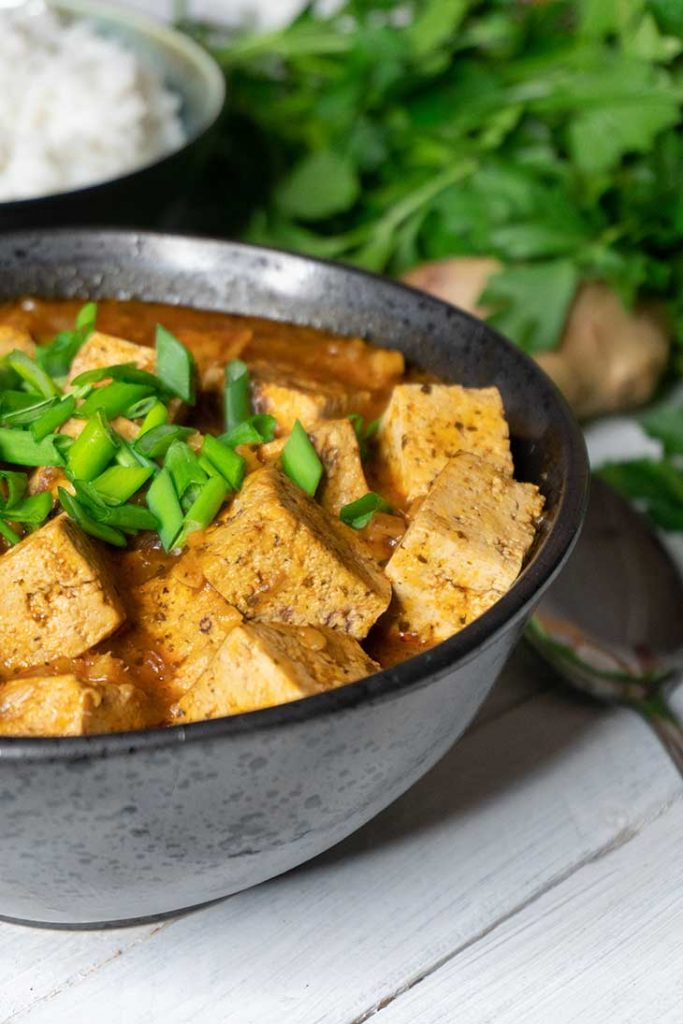 Vegan Mapo Tofu Asian Recipe