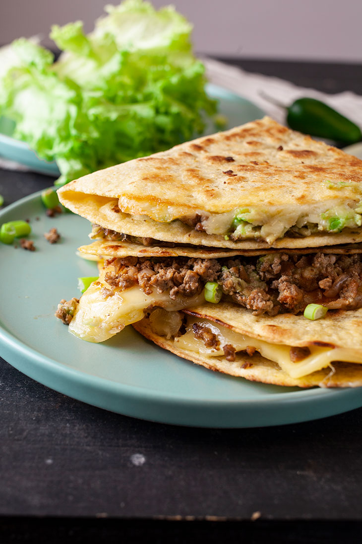 Ground Soy Quesadillas Vegan