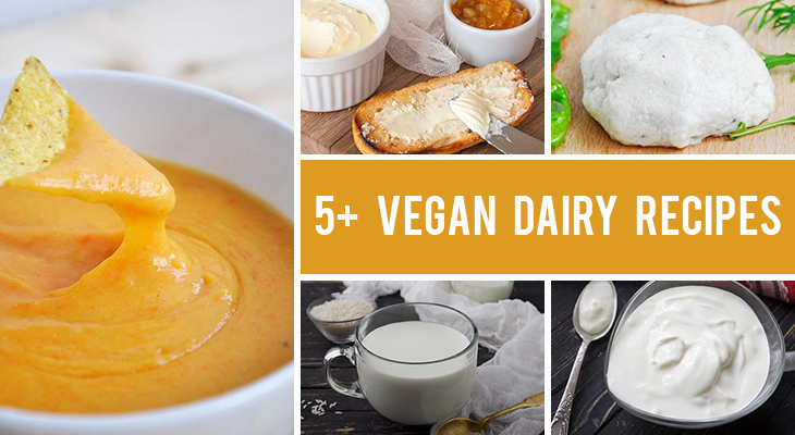 How To Replace Dairy in Your Diet - 5+ Dairy-Free Recipes for Cheese, Milk, Butter & More