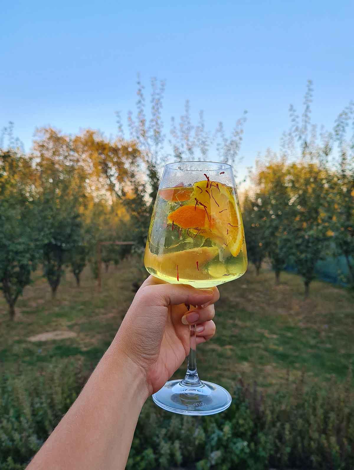 saffron gin tonic cu sofran cocktail reteta